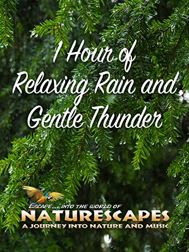 1-hour-of-relaxing-rain-and-gentle-thunder