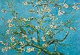 Vincent Van Gogh Poster Papier Peint - Branche D'Amandier en Fleurs, 1890, 3 Parties (360 x 250 cm)