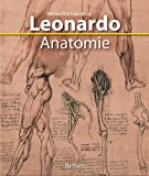 Leonardo Anatomie