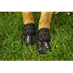 4Paws Dog Boot Active Paw Protectors - (1 x Pair - 2 boots) Reflective and Robust with rubber grip sole and breathable… 12