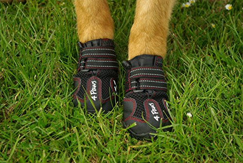 4Paws Dog Boot Active Paw Protectors - (1 x Pair - 2 boots) Reflective and Robust with rubber grip sole and breathable… 4