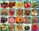 Lawn & Patio - Traumgarten2014 Tomaten Set 1: Fleischtomate Cherrytomate Cockteiltomate Rispentomate 20 Historische Alte Sorten Tomatensamen Saatgut
