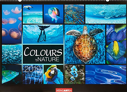 Colours of Nature - Kalender 2019