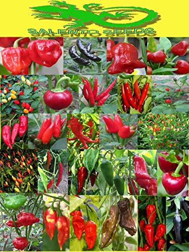 Portal Cool Bishop & # 039; S Crown Hat Ve.: 25 Chilli Samen Sorte 'Choice Chili Pepper Samen Hot Italian Variety