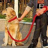 Heavy Duty Hund Geflochten Halsband–Gear Martingal verstellbar choke-style Hund Halsband –, die Solide handgefertigt Seil Leine mit Bonus Pet Training eBook–Preis XES