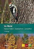 Im Wald: Natur erleben - beobachten - verstehen - Andreas Jaun, Sabine Joss