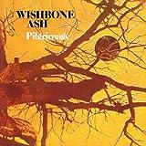 Wishbone Ash [Re-Issue]: Pilgrimage [Shm] (Audio CD)