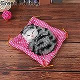 Baby Trend Kitties - Best Reviews Guide