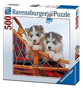 Ravensburger - Cuadrado: cachorros de Husky, puzzle de 500 piezas (15230 8)