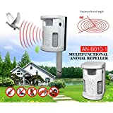 Bsi 25466 multistop outdoor appareil anti nuisible avec for Anti chat jardin