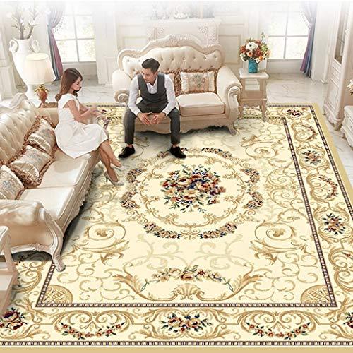 BHG Home Design Bereich Teppich Teppich, Vintage Bohemian Woven Gesamtmuster und Grenze Fußmatte, Indoor Floor Wohnzimmer Schlafzimmer Kinderzimmer Bedruckter Teppich (6,5 * 9ft) -