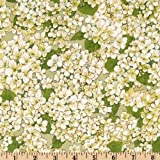 Michael Miller Morning Feen Flower Garden Fabric by The