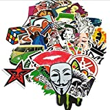 Anddas 100 Assorted Decal Stickers for Skateboard Snowboard Vinyl Graffiti Laptop Luggage Car Bike Bicycle