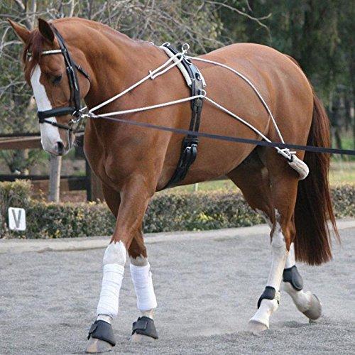 Misa de Dos Tonos Pessoa Durable escolarización Equestrian sobrecincha de Equipo de capacitación en Todos los Colores, Blanco