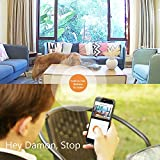ANNKE IP Kamera Kompatibel mit Amazon Alexa,1080P HD Home WiFi Sicherheit Überwachungs kamera,Wi-Fi Indoor Überwachungskameras mit 2-Wege-Audio,Haustier,Baby-Monitor, Nachtsicht, Bewegungserkennung - 5