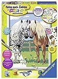 Ravensburger Malen nach Zahlen 28566 - Glückliche Pferde, Malset