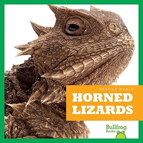 Texas Horned Lizard Tiere (Horned Lizards (Reptile World))