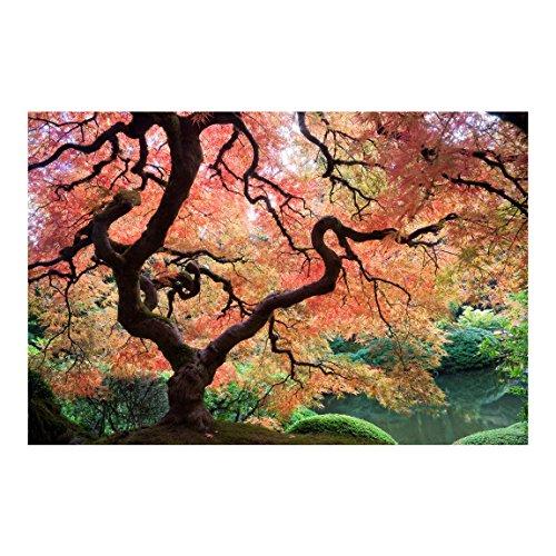 Apalis Waldtapete Vliestapete Japanischer Garten Fototapete Wald Breit, Vliesfototapete Wandtapete Wandbild, mehrfarbig