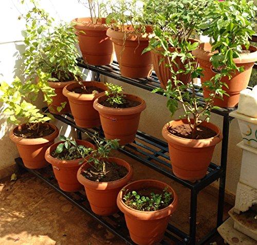 Akura Gardening Stand (Steel Tubes - 25 X 25mm; Size- 1000mm X 900mm X 800mm)