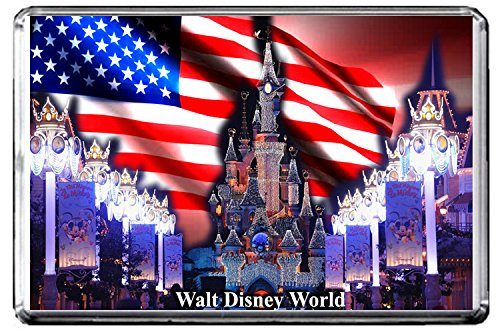 C395 WALT DISNEY WORLD KÜHLSCHRANKMAGNET USA TRAVEL PHOTO REFRIGERATOR MAGNET (Travel Disney Walt)