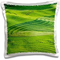 Agriculture - Washington State, Palouse. Rolling hills