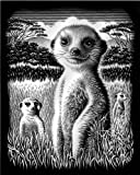 Reeves Medium Scraperfoil (Meerkat)