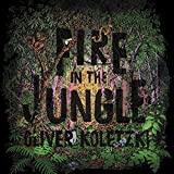 Fire in the Jungle (Lp+Mp3) [Vinyl LP]