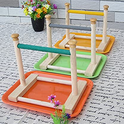Hypeety Small Bird Parrot Stand Perch Table Top Stand Playground Grind Perch Swing Training Playstand Exercise Chew Toys… 3
