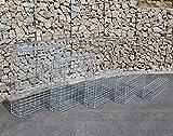 Gabione Größe wählbar Steingabionen Steinkorb Gabionen Wand Drahtkorb Mauer 20 cm tief 5x10 (1 Stück 100x80x20 cm)
