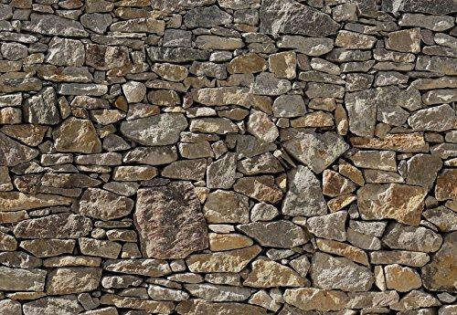 Sunny Decor - Fototapete STEINMAUER - 368 x 254 cm - Tapete, Wand Dekoration, Stein, Steinoptik Stone Wall, Mauer - SD908
