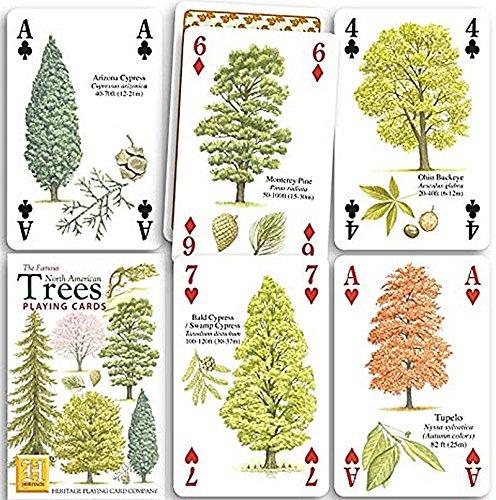Nordamerikanische bäume spielkarten