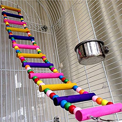 Bello Luna Rainbow Parrot Ladder Flexible Wooden Swing Toys for Bird 5