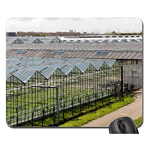 Mauspad,Gartenbau Landwirtschaft Gewächshäuser Gemüse Perfect Desk Pads 25Cmx30Cm