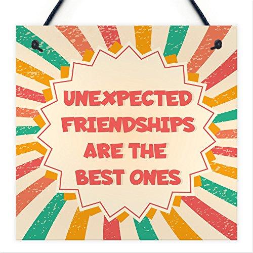 Rot Ocean Best Friend Unerwartete Freundschaften Wandschild zum Aufhängen bunt Love Schild Geschenke für Frauen