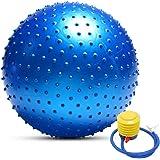 TOMSHOO - Palla da yoga anti-scoppio, elevata stabilità, per pilates, fitness, ginnastica, 55 cm/65 cm/75 cm, pompa ad aria i