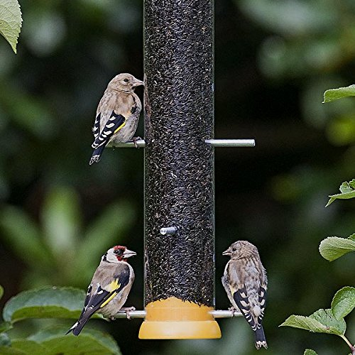 Jacobi Jayne Droll Yankees Yellow Lifetime Wild Garden Bird Niger Seed Feeder