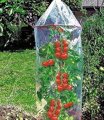 Tomaten-Reifehaube, Tomatenhaube mit 2 Ringen 130 cm lang, 65 cm ø von Dinies Deko & Gartenartikel - Du und dein Garten