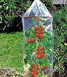 Prima Flora 610001 Tomatenreifehauben mit Ringen, 3 Stück, 1.3 x 0.65 m, transparent