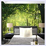 BHXINGMU Custom Photo Wallpaper 3D Landschaft Wand Dekorationen Wohnzimmer Schlafzimmer Wallpaper Wandbild Tapeten Home Decor Wandbild 60 Cm (H) X 90 Cm (W)