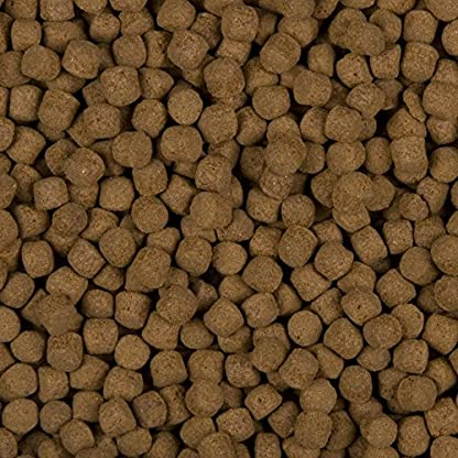 Sanikoi 6mm 10L Excellent All-Round Fish Food 2