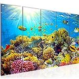 Bilder Unterwasser Korallen Wandbild 200 x 80 cm Vlies - Leinwand Bild XXL Format Wandbilder Wohnzimmer Wohnung Deko Kunstdrucke Blau 5 Teilig - MADE IN GERMANY - Fertig zum Aufhängen 608755a