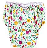 Popolini Trainers, Fruits, wasserdichte Unterhose (waschbare Trainingswindel), mit Bio-Baumwolle, Größe S 9-12kg