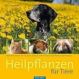 Heilpflanzen für Tiere (Amazon.de)