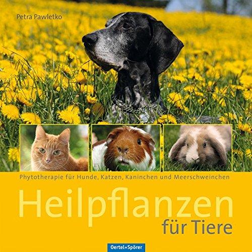 Heilpflanzen für Tiere: Phytotherapie für Hunde, Katzen, Kaninchen und Meerschweinchen