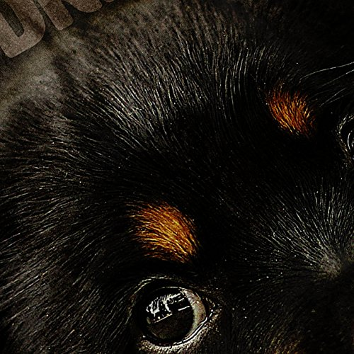 Tagträumer Welpe Niedlich Hund Welpe Fantasie Damen S-2XL Muskelshirt | Wellcoda Rot
