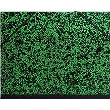 Exacompta 542800E - Carpeta de dibujo annonay con gomas, 52 x 72 cm, color verde