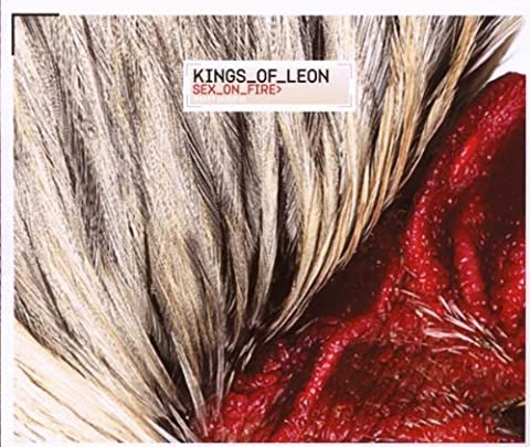 Sex On Fire by Kings Of Leon (King Of Leon Sex On Fire)