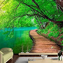 ventana paisajes naturaleza puente