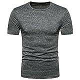 POIUDE Herren Slim Rundhals Einfarbige T-Shirts Kurzarm Shirt Vintage Sweatshirt S-2XL(Grau, X-Large)