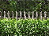 PerfectHD Zaunsichtschutz, Windschutz (30 Versch. Motive) für Doppelstabmattenzaun *Holzzaun und Buxus* einseitig, 19cm, 9 Streifen